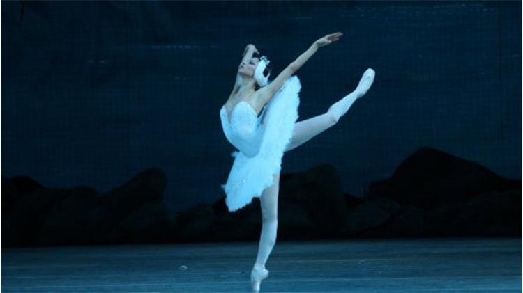 Swan Lake (Mariinsky Ballet Principals & Kharkov National Opera and Ballet Theater)