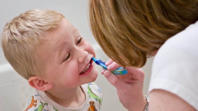 Brushing up: how to keep your toddler's teeth healthy