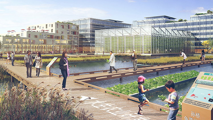 US architect unveils design for a 100-hectare urban farming district in Shanghai