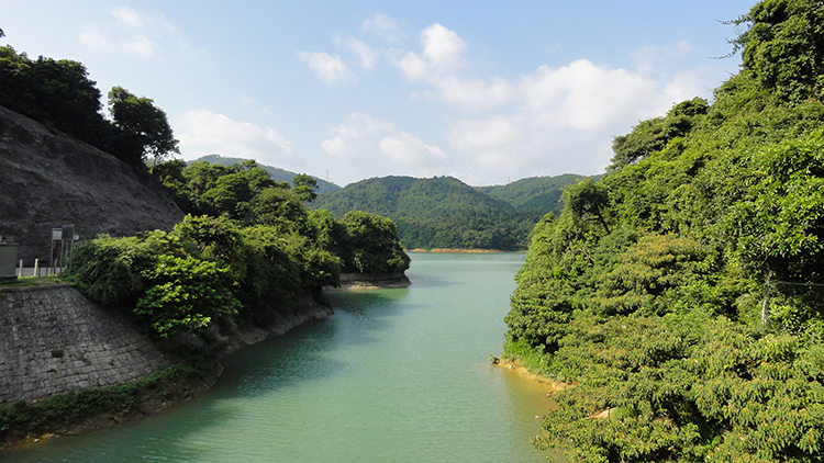 Shanghai will open 3 new country parks by October