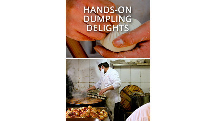 Hands On Dumpling Delights