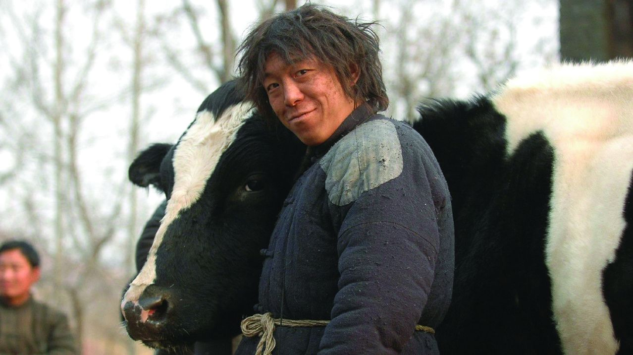 Time Out Film Screening: Cow