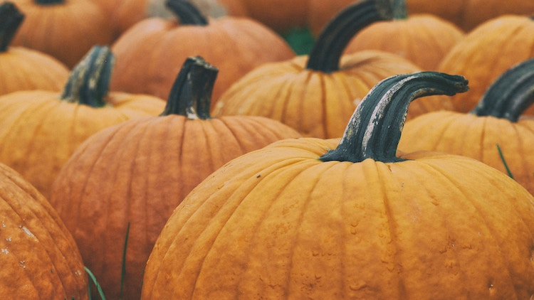 Charity Pumpkin Carving Contest at The Rooster