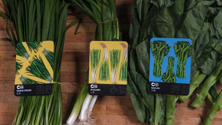 These gorgeously illustrated Chinese vegetable cards will teach you your luffa from your tatsoi