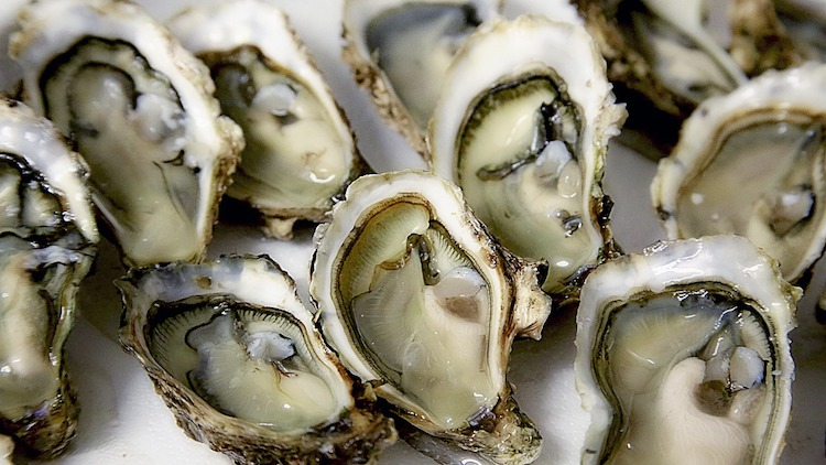 The Nest is offering oysters for 1RMB this Sunday and Monday to celebrate its 4th anniversary