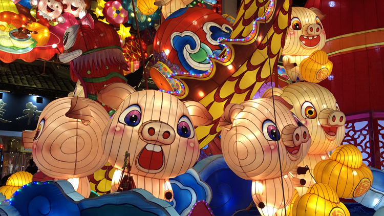 6 things to know if you were born in the year of the pig