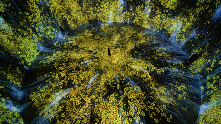 Universe of Water Particles in the Tank, Transcending Boundaries_10