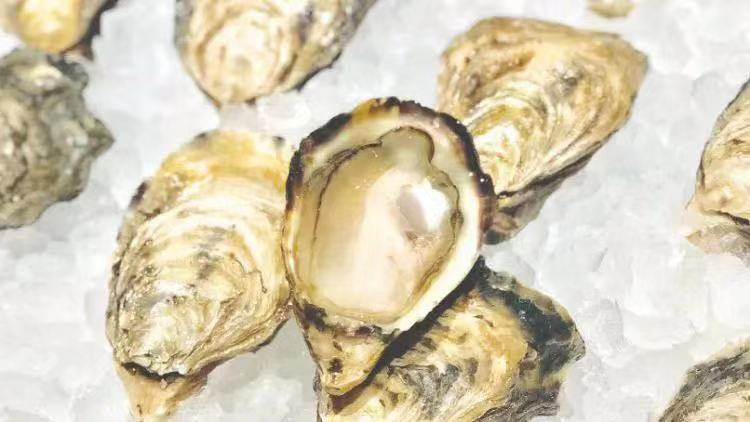 This oyster and wine promo raises money for girls' education