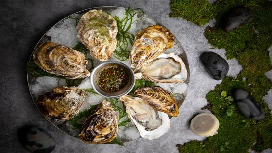 Oyster Mondays at Charcohol